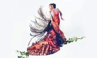 Amores Flamencos, de Got Talent a la Gran Vía de Madrid