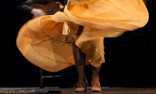 Muchos artistas flamencos españoles siguen buscando que les den cosas