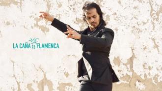 Farruquito entre Marina Heredia y Dorantes en La Caña Flamenca 2018
