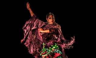 Flamenco en las Medallas de Oro al Mérito en las Bellas Artes
